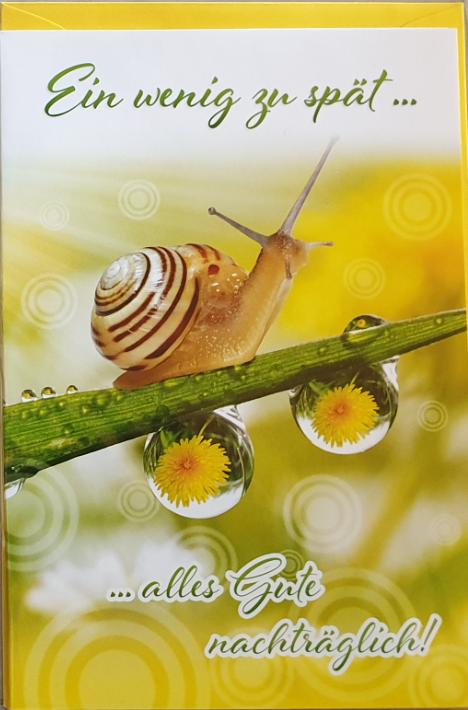 Nachträglich - Geburtstagbillett 03-56-1192