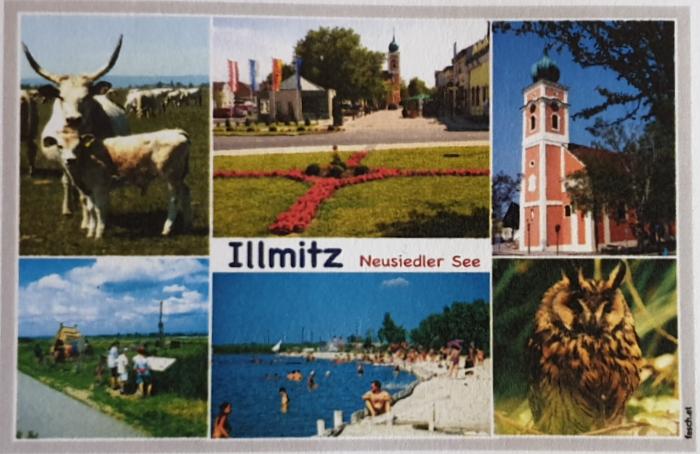 Magnet - Illmitz 14-FQ7142-26