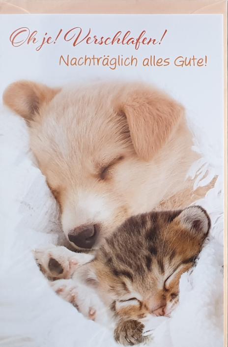 Nachträglich - Geburtstagbillett 03-56-1105