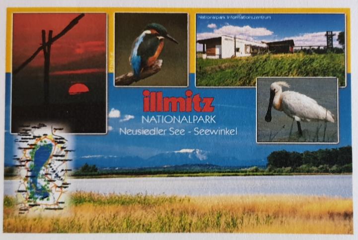 Magnet - Illmitz 14-FQ7142-15