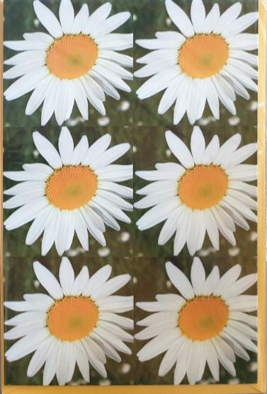 Blancobillett 03-49-2293