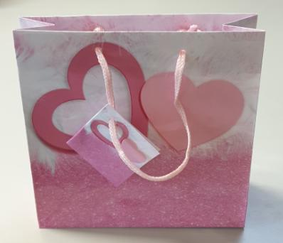 Geschenktaschen - Quadratisch 04-01-7002