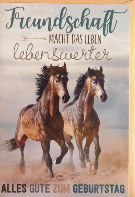 Geburtstagsbillett 03-51-1137