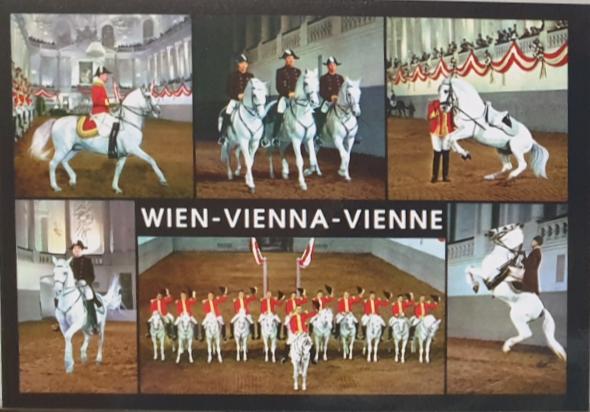 AK - Wien 01-18148