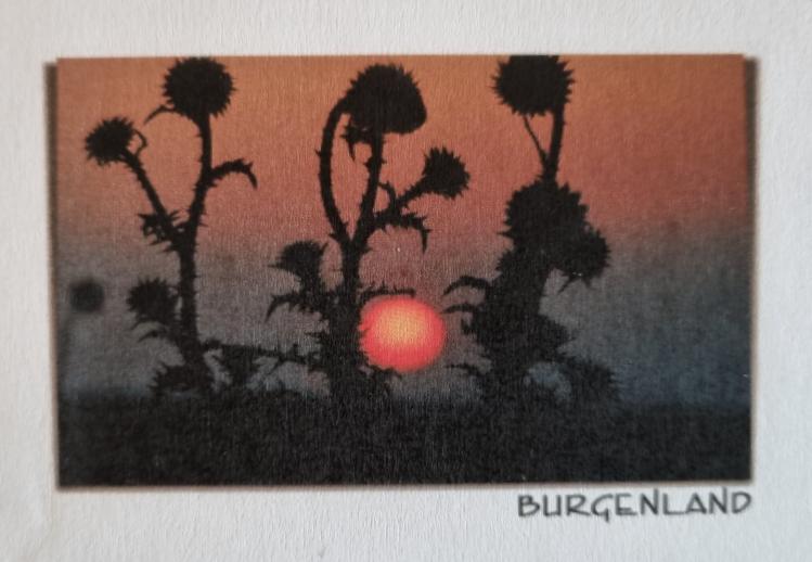 Magnet - Burgenland 14-FQ7000-234